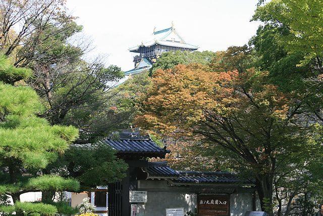 大阪城・大阪城公園の紅葉情報