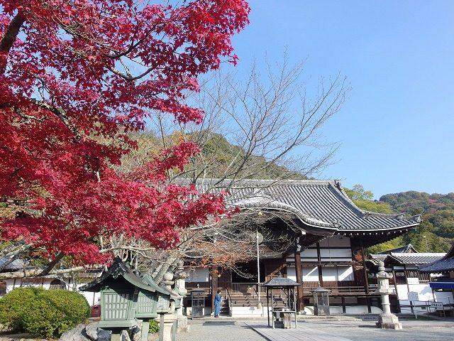 和歌山 根来寺の紅葉