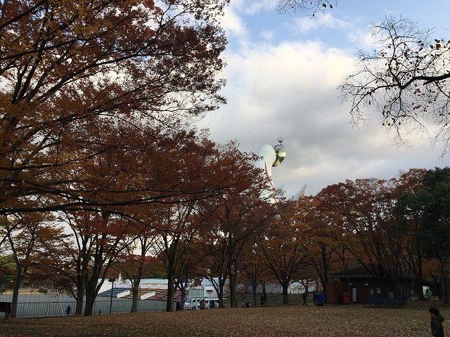 万博記念公園の紅葉情報 おすすめの紅葉スポット