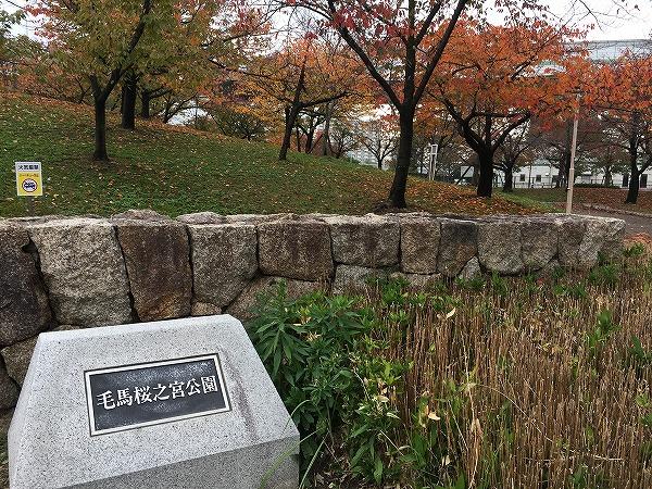毛馬桜之宮公園の紅葉