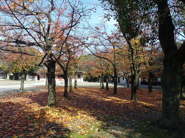 大阪護国神社への参拝