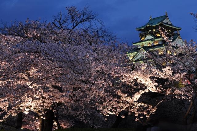 大阪城公園のライトアップ