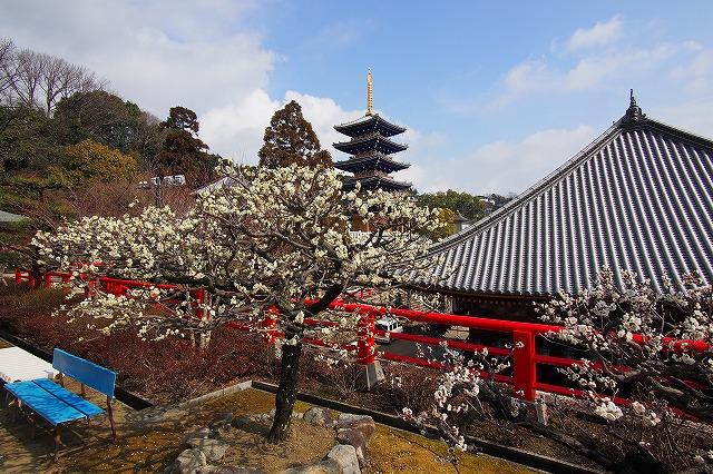 安産祈願の中山寺