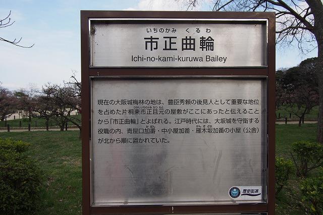 西日本随一 大阪城の梅林